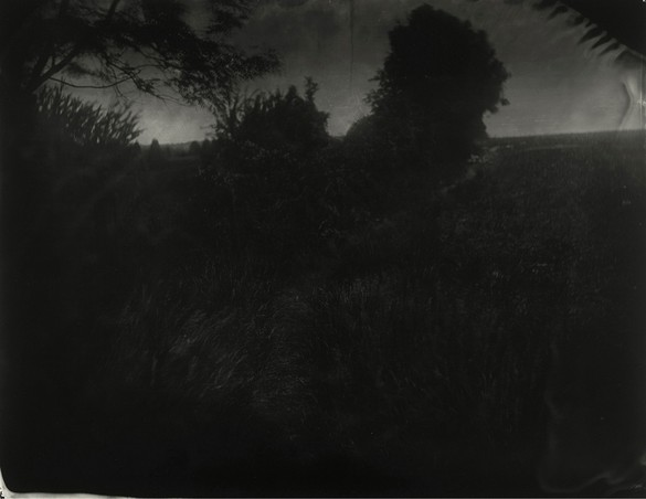 Sally Mann, Battlefields, Antietam (Boy's Trail), 2000, gelatin silver print, 38 × 48 inches (96.5 × 121.9 cm). Collection of the artist