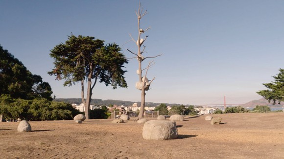 Still from the video Giuseppe Penone at Fort Mason showing the artist's 2004 sculpture Idee di pietra (Ideas of Stone) installed at Fort Mason in San Francisco.